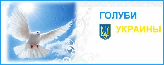 Голуби Украины