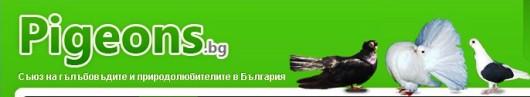 Голуби Болгарии